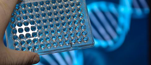 Cee legal matters latest cee legal news cobalt advises vc funds on blueprint genetics financing malvernweather Gallery