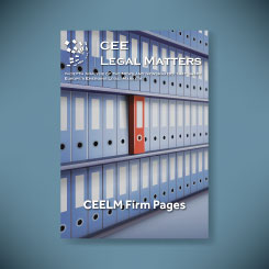 CEELM Firm Pages - side